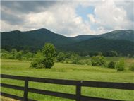 Shenandoah Valley Riders